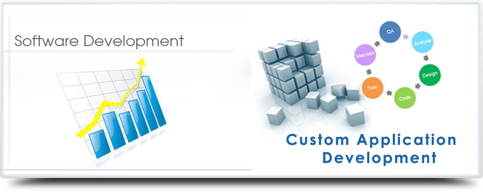 Get Software Development Services to Get More Busi...
